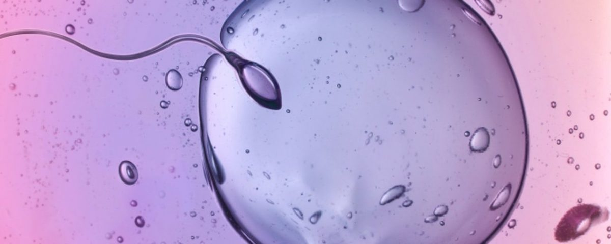 The Difference between Sperm and Semen